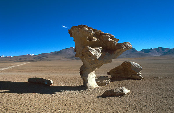 Árbol de Piedra - kamenný strom