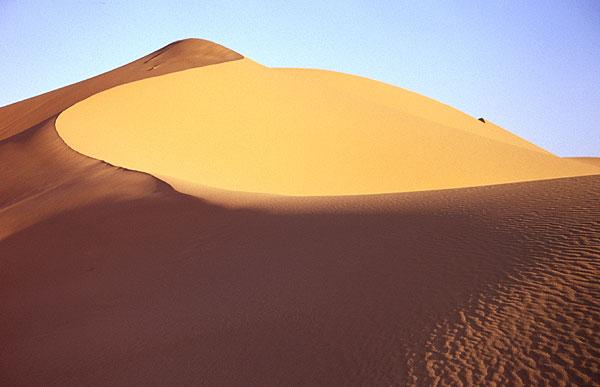 Ladné křivky písečné duny
