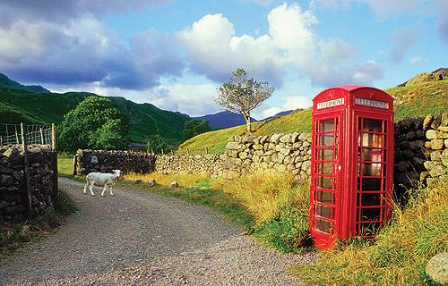 Telefonní budka mezi pastvinami
