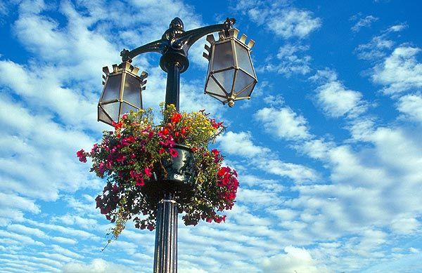Lucerna s květinami