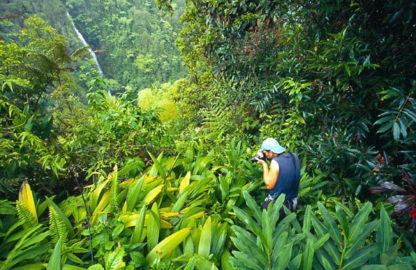 Fotograf v tropickém pralese