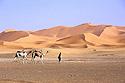 Erg Chebbi, velbloudi a Sahara
