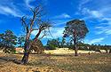 Písečná poušť na ostrově Olchon