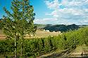Národní park Tereldž - Mongolsko