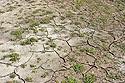 Suchem popraskaná půda