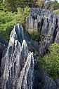 Ostré hroty vápencových Tsing