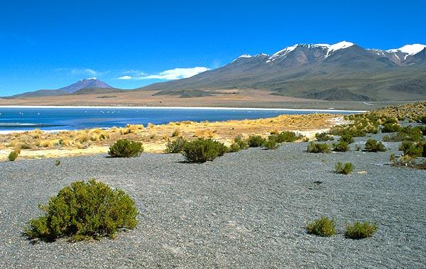 Laguna Caňapa