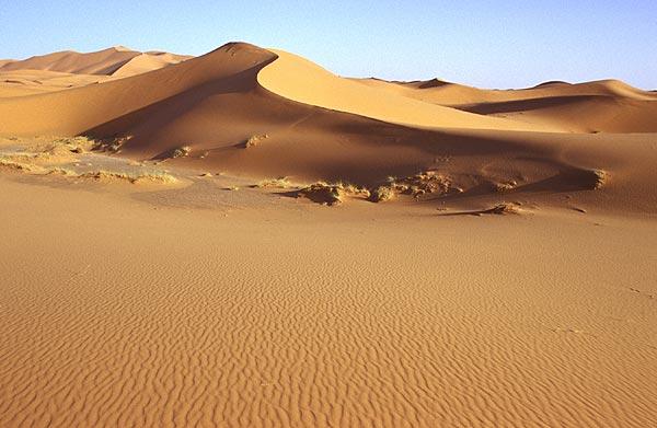 Písečná duna na Erg Chebbi