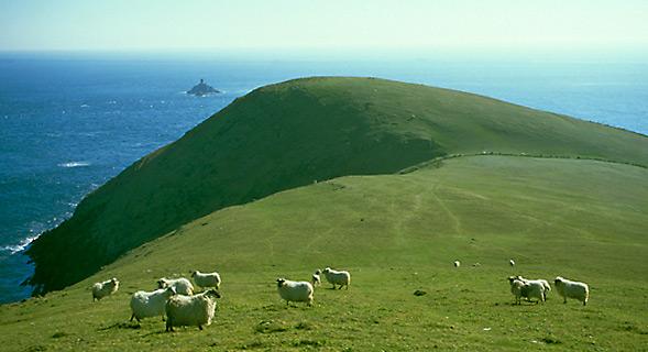 Dursey Head