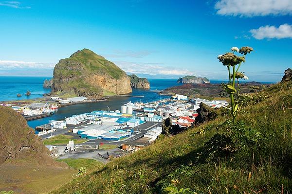 Přístav na ostrově Heimaey