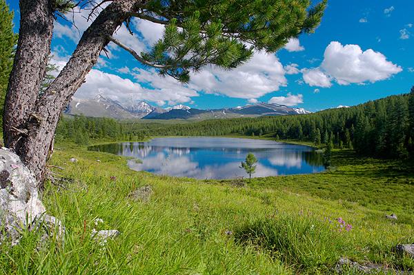 Altaj, jezero na kraji horské louky