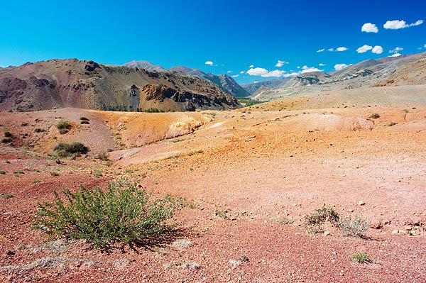 Barevná poušť