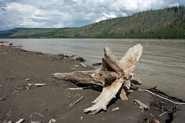 Na břehu řeky Yukon
