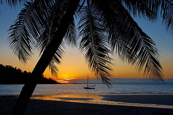 Západ slunce pod palmou