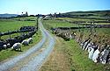 Farma na ostrově Dursey