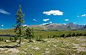 Altaj, horské pláně nad hranicí lesa