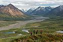 Údolí řeky Teklanika v Denali